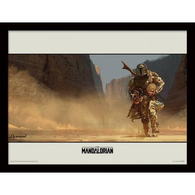 Star wars The Mandalorian Cadre collector Survive 30x40cm